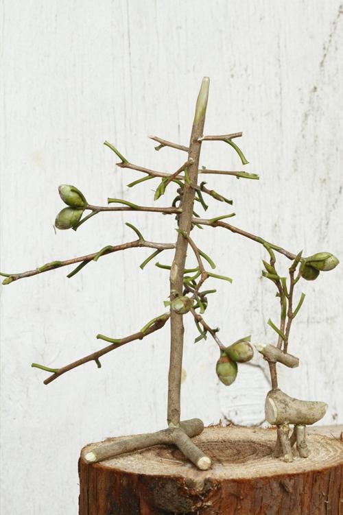 1月号で掲載した「小枝のクリスマスツリー作り」